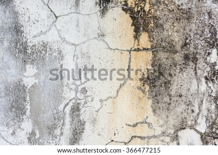 Texture cracked of cement concrete
