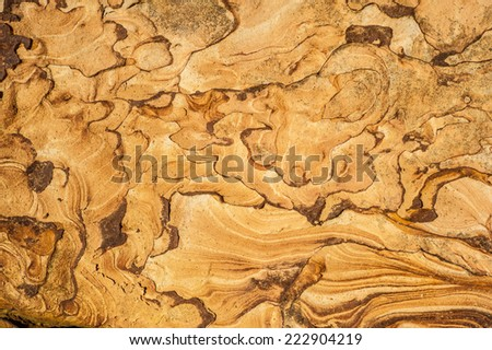 Texture of a beautiful coastal weathered sandstone, Taiwan, Yehliu - stock photo
