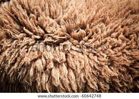 Texture of a Brown Sheepskin Rug
