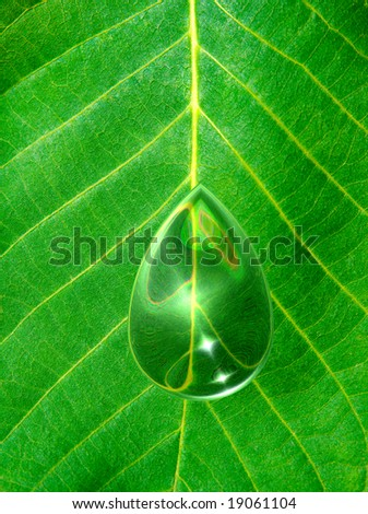 Texture of a green leaf with drop - stock photo