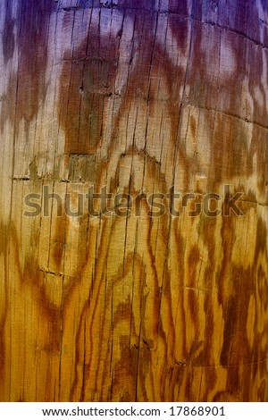 Texture of a natural wood - stock photo