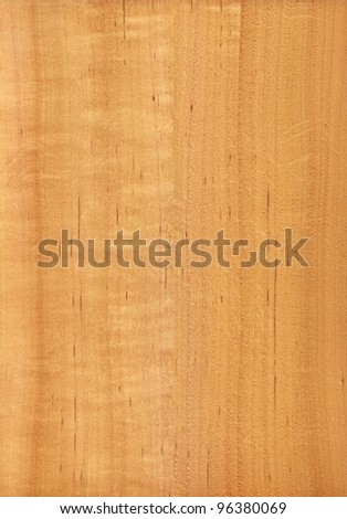 Texture of alder (high-detailed wood texture series) - stock photo