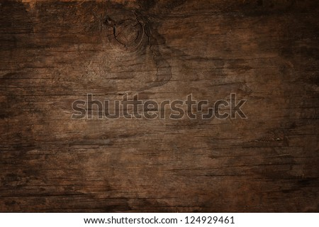 texture of bark wood use as natural background - stock photo