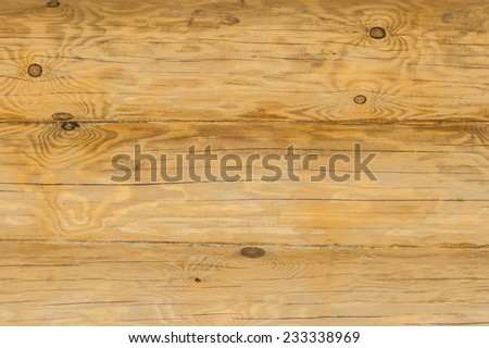 Texture of brown wood noble breed close up. - stock photo
