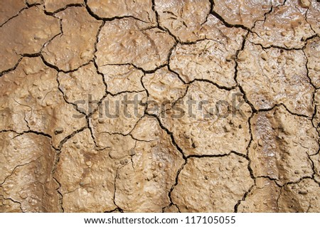 texture of cracked earth - stock photo