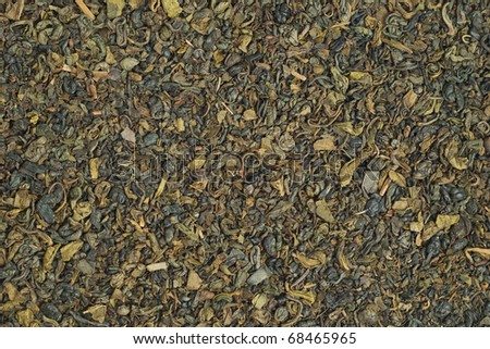 Texture of dried green tea leaves. - stock photo