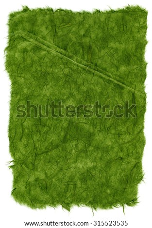Texture of green rice paper with torn edges. Isolated on white background.Scanned at 1200dpi using a professional scanner. - stock photo