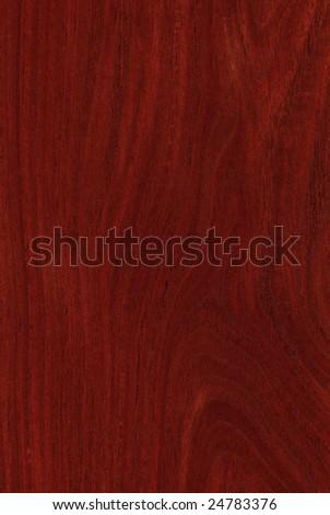 Texture of jarrah (high-detailed wood texture series) - stock photo