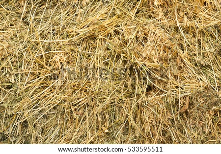 texture of natural dry hay in a stack