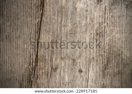 Texture of rustic wood background closeup