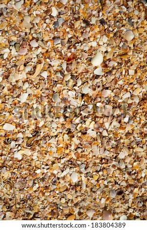 texture of sand on the beach - stock photo