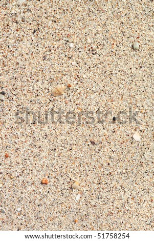 texture of sand on the beach