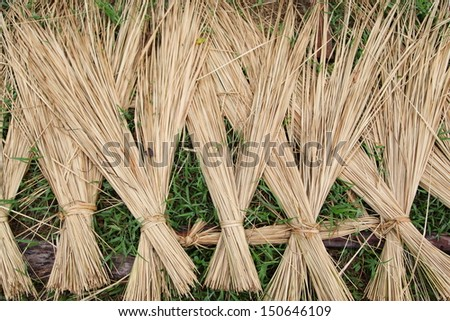 Texture of straw.Close up straw background.