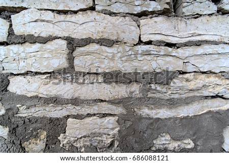 Texture of the old limestone wall