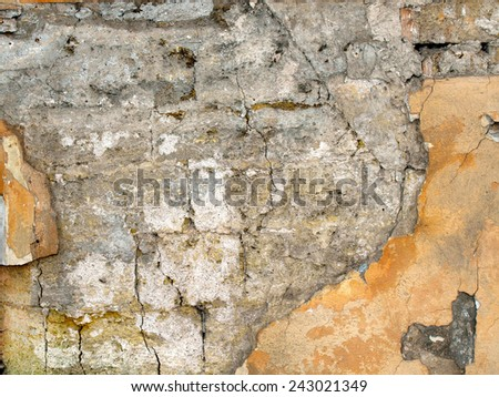 Texture of the old walls of coquina with shattered plaster yellow