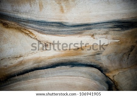 Texture of walnut. - stock photo