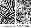 texture of zebra cloth - stock photo