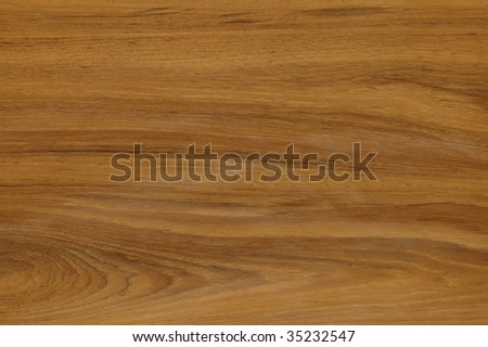 TEXTURE PATTERN-close-up shot of wood texture - stock photo