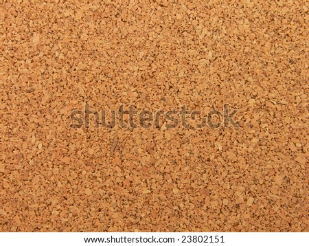 Texture picture of a cork wood panel