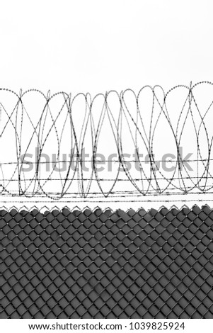 Texture Cage Metal Net Isolate On Stock Photo (Download Now ...