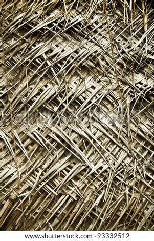 Texture with palm leafs - stock photo