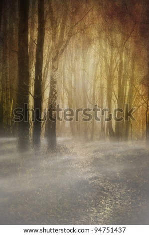 textured and toned image depicting an eerie woodland footpath with wisps of mist just above ground level - stock photo