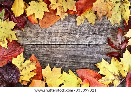 Textured autumn leaves background over a rustic wooden background. - stock photo