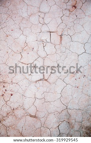 textured cracked clay earth in the desert