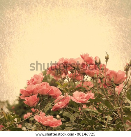 Textured Flowers - stock photo