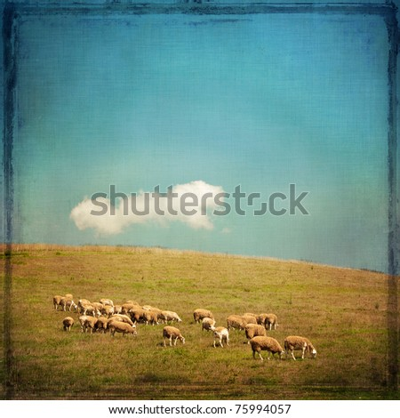 Textured image of grazing sheep on a hillside with blue sky and cloud in the background. - stock photo
