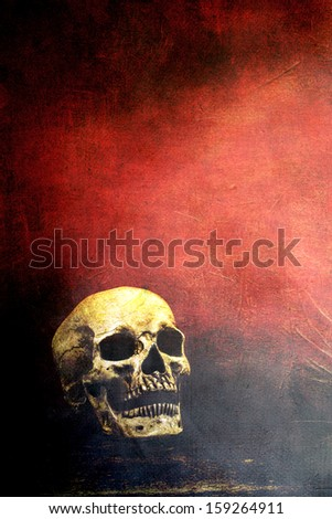 Textured old human skull with room for text.  - stock photo