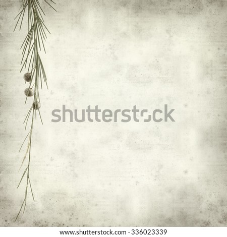 textured old paper background with Asparagus arborescens, plant endemic to Canary Islands - stock photo