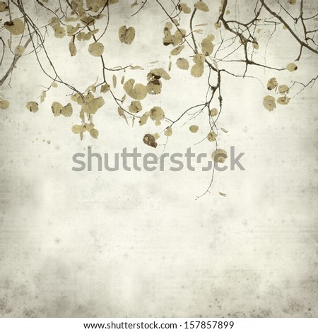 textured old paper background with autumnal aspen