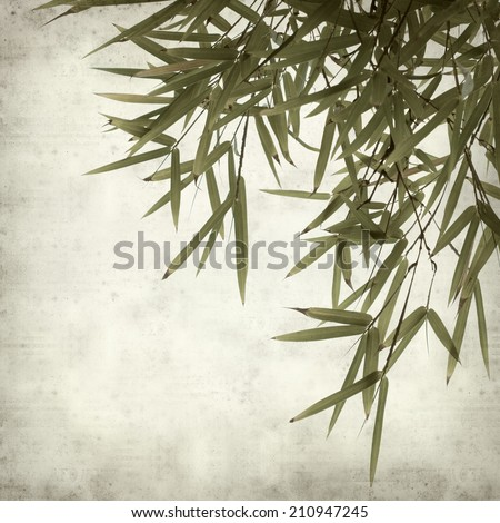 textured old paper background with bamboo leaves