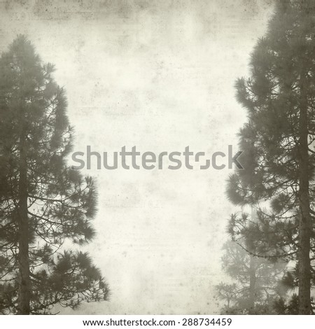 textured old paper background with canarian pine trees - stock photo