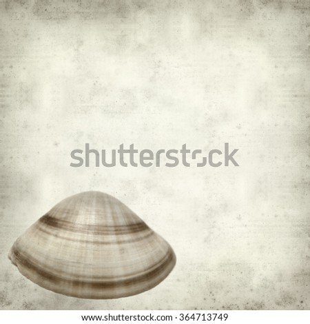 textured old paper background with clam shell
