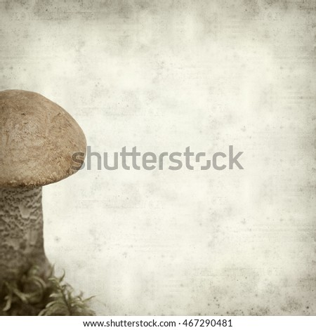 textured old paper background with edible red cap mushroom