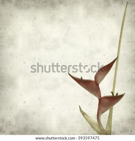 textured old paper background with exotic flowers of Heliconia - stock photo