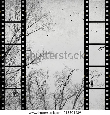 Textured old paper background with films strips, fall trees and birds  -  Vintage film stripe abstract background     - stock photo