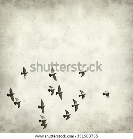 textured old paper background with flock of pigeons
