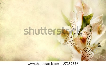 textured old paper background with flowers - stock photo