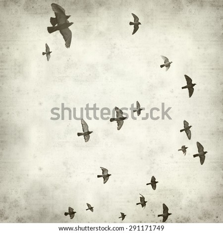 textured old paper background with flying pigeons