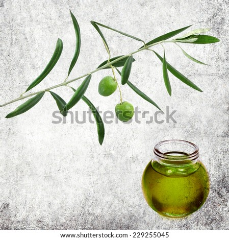 Textured old paper background with glass pot of olive oil and olive tree branch with fresh fruits. Paper texture. Aged textured image in retro style  - stock photo
