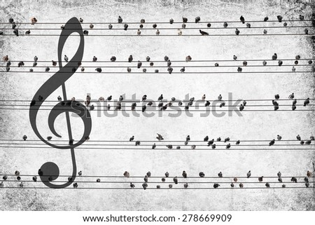 Textured old paper background with pigeons sitting on electrical wires and treble clef. Nature musical old paper background