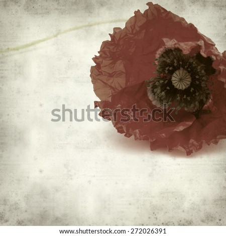textured old paper background with red poppy