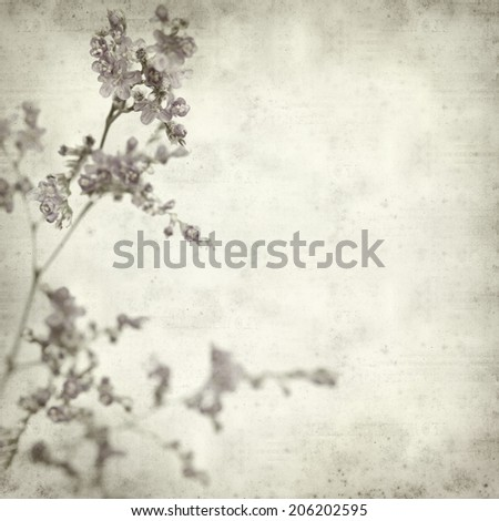 textured old paper background with tiny purple limonium  flowers
