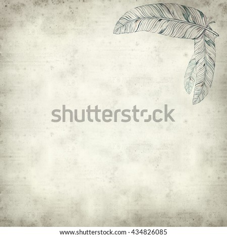 textured old paper background with watercolor feather painting - stock photo