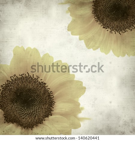 textured old paper background with yellow sunflower