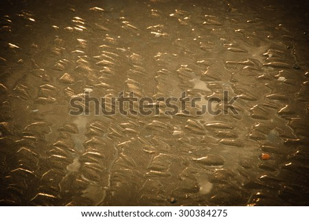 Textured seabed at low tide during the golden sunset (Normandy, France). Closeup. Vignette. - stock photo