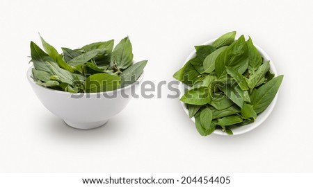 Thai basil isolated on white background, view from front and top.